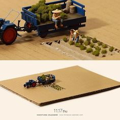". 11.17 thu ""Harvest"" . 「たーったダンボールひと箱分収穫すんのに、こげな苦労してどーすんだべ」 . #ダンボール #畑 #Field #Cardboard —————— #銀座で展覧会開催中です #詳しくはプロフィールのurlから"