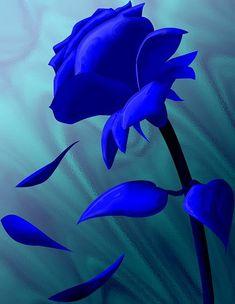 Love Blue, New Blue, Blue Flowers, Red Roses, Black Roses, Blue Roses Wallpaper, Lit Wallpaper, Image Bleu, Bleu Royal