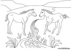 Two Horses coloring page. There are many free Two Horses coloring page in HORSE coloring pages. Color online this Two Horses coloring page and send it to . Farm Animal Coloring Pages, Coloring Pages For Kids, Coloring Sheets, Coloring Books, Desktop Images, Two Horses, Free Hd Wallpapers, Book Images, Home Pictures