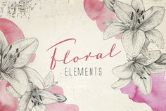 Check out Floral pencil sketch elements (png) by SoNice on Creative Market