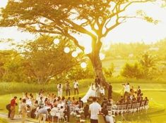 Best Ideas For Garden Wedding Venues Philippines Best Ideas For Garden . Best Picture For chilly Beach Outfit For Your Taste You are looking for s Florida Wedding Venues, Beach Wedding Reception, Wedding Locations, Reception Ideas, Wedding Couple Photos, Wedding Pictures, Wedding Ideas, Wedding Blog, Garden Venue