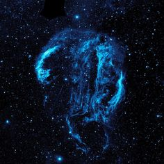 ScienceChannel: The gorgeous Cygnus Loop nebula. https://t.co/hIrx5MMKel