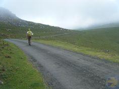 Green, Sheep and Fog - Pyrenees Climb