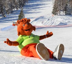 #mascotte #OrsoCharlie dell' #AEvolutionSkiSchool #Folgarida in #ValdiSole #Trentino #SkiareaCampiglio