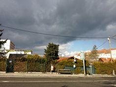 #Wien, #Schrebergarten, # Unwetter Sidewalk, Allotment, Walkways, Pavement, Curb Appeal