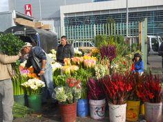 A las afueras de la Plaza Paloqueado Bogota