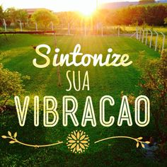 Sintonize