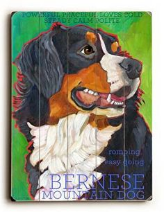 Bernese Wood Sign This Bernese wood sign by Artist Ursula Dodge is sure to bring style to your space and a smile on your face. The sign is a hand distressed planked wood design made of birch wood. The