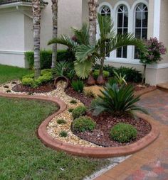 Indoor Outdoor palms look great for  small landscape areas.