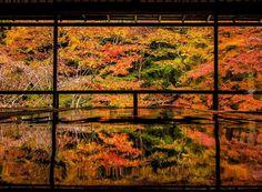 Landscape Pictures, Nature Pictures, Travel Pictures, Beautiful Pictures, Japanese Landscape, Japanese Architecture, Beautiful Places In Japan, Autumn Nature, Autumn Leaves