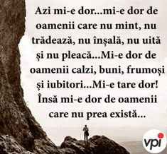 Azi mi-e dor. Abs, Wisdom, Words, Quotes, Crunches, Abdominal Muscles, Killer Abs, Six Pack Abs, Horse