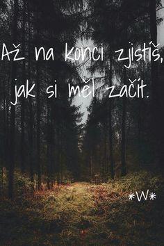 #citáty