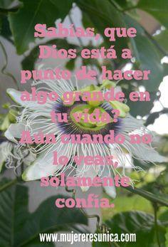Dios hará cosas grandes  www.mujereresunica.com