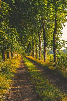 51 ideas for summer nature photography pathways Beautiful World, Beautiful Places, Amazing Places, Country Life, Country Roads, Country Fences, Country Living, Landscape Photography, Nature Photography