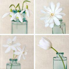 "5x5 Print Set - Photo Set - Flower Art Print Set - Floral Art - Shabby Chic Wall Art - Photo Collection in White - ""White Spring Flowers"". $36.00, via Etsy."