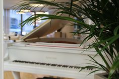 Salon Piano, Music Instruments, Pictures, Living Room, Hairdressers, Musical Instruments, Pianos