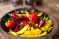 A step by step guide to growing your own chilli plants. Advice, tips and tutorials to help you grow your own chillies. Edible Garden, Easy Garden, Garden Plants, Indoor Plants, Chilli Seeds, Chilli Plant, Growing Peppers, Pepper Plants, Stuffed Hot Peppers