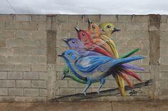 Graffiti Street Art Bonet Birds