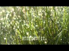 구슬비/권오순 시/안병원 곡/김치경 노래