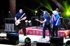 Texas Flood Belgrade - Tribute to Jimi Hendrix - 18th September 2015 - #ecowoodstage
