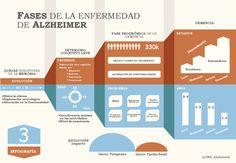 Las fases de la enfermedad de #alzheimer - #Infografia via @CRE_Alzheimer