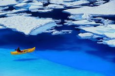 Floating On Blue, Glacier Bay, Alaska