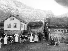 norwegian bruk.  Loving, Naming, feeding, milking by hand, no machines, just simple farming. It's what PEOPLE used to do everywhere.