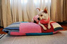 """""""quilting"""" + old pillow = fun doggy bed"""