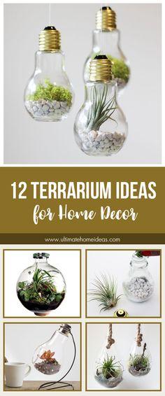 12 Terrarium Ideas for Home Decor #homedecor #homeideas #terrarium
