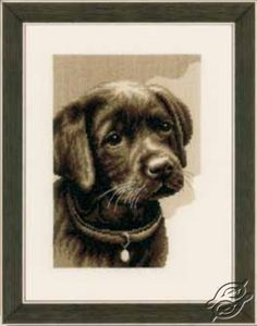 Labrador Puppy - Cross Stitch Kits by VERVACO - PN-0158080