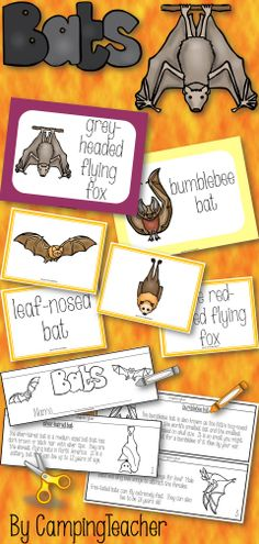 Bats! Posters, book to create, matching cards for pocket chart center
