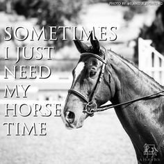 Sometimes I just need my horse time. #horsequote #horses