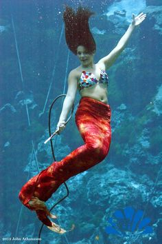 Happy Friday from Mermaid Andrea! Have a safe and terrific weekend!