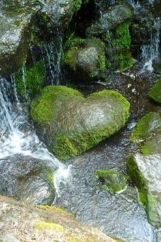 The perfect heart rock! I love rocks and have started I get a collecting heart shaped rocks. I also find a rock on all of my hikes and outings! Looks like this heart has been loved into shape. Heart In Nature, All Nature, Heart Art, I Love Heart, Happy Heart, Heart Shaped Rocks, Les Cascades, Jolie Photo, Stone Heart