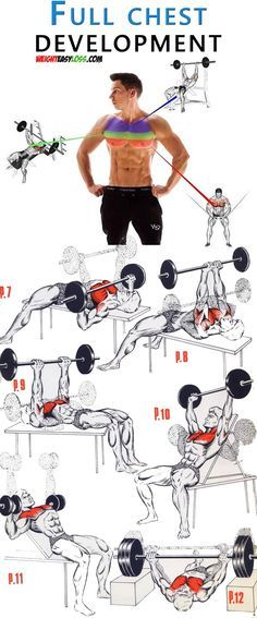 Full Chest Workout  Full Chest Workout Full Chest Workout, Chest Workouts, Easy Workouts, Weight Training Programs, Weight Training Workouts, Training Tips, Workout Routine For Men, Workout Abs, Exercise Routines