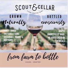 Grape Vineyard, Bottle Cleaner, Organic Wine, Craft Online, Types Of Wine, Wine Time, Cellar, Wines, Red Wine