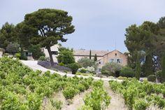 Lautour Vaucros - provence