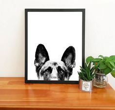 Brighten up your day with our Cute Peek-A-Boo German Shepherd Wall Art. Add a touch to your walls and play a little with your home decors. Canvas Poster, Canvas Wall Art, Wall Art Prints, Bedroom Canvas, Nursery Canvas, Buy German Shepherd, Watercolor Sunset, Watercolor Painting, Dogs And Kids