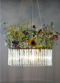 Love these chandeliers from Polish designer Magda Jurek via State of Green