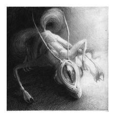 A creature dreamed by Kafka - taken from the book of Jorge Luis Borges. Illustration by Kalina Muhova