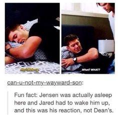 Sleeping Jensen on set