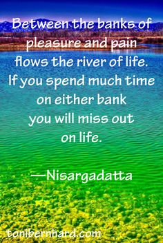 """Between the banks of pleasure and pain flows the river of life. If you spend much time on either bank you will miss out on life."""