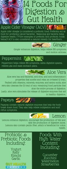 Certain fruits, vegetables and herbs can promote good digestion & gut health. See 14 foods for digestion, along with a list of food types… seasonal symptoms health health natural remedies aid Natural Remedies For Heartburn, Natural Cures, Natural Healing, Natural Treatments, Natural Foods, Holistic Healing, Natural Beauty, Natural Antibiotics, Natural Oil