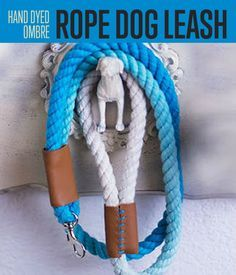 Ombre Rope Dog Leash | Here's a stylish dog leash you can make for your pet. #DIY