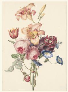 New ideas for flowers bouquet illustration botanical prints Peony Illustration, Vintage Illustration, Illustration Botanique, Floral Illustrations, Art Floral, Art Mural Floral, Floral Prints, Vintage Flower Prints, Vintage Flowers