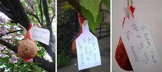 Seedballs to Nature Project Zine, Artist, Nature, Projects, Blog, Gifts, Log Projects, Naturaleza, Blue Prints