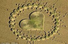 Resultado de imagen para crop circles