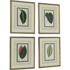 Set of Four Botanical Prints C.1860 French Matting Beautiful Leaved Plants Edward Joseph Lowe  @rubylanecom #BotanicalPrint #rubylane