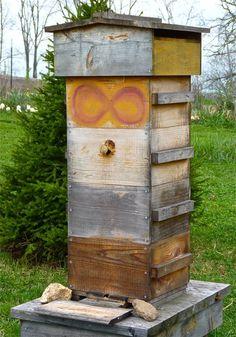 Introduction to Biodynamic Beekeeping | Biodynamic Association