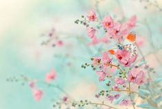 Kleurinspiratie! Hou het niet bij één kleur: roze-mint-oranje. Dat maakt je interieur spannend ♡ MD ++